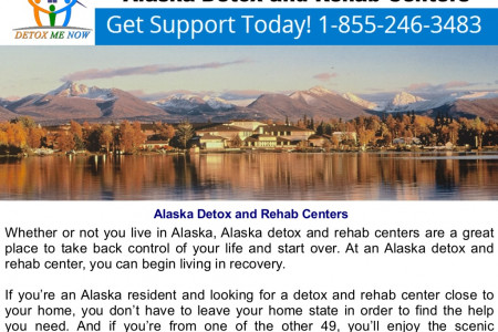 Alaska Detox And Rehab Centers Infographic