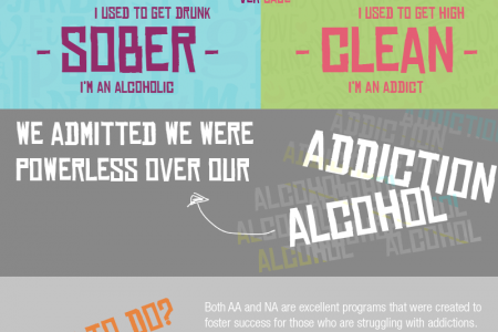 Alcoholics Anonymous and Narcotics Anonymous Infographic