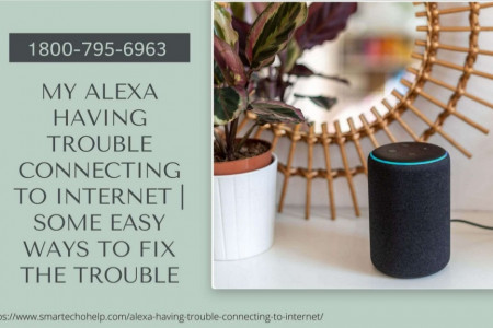 Alexa Can't Connect to Internet 1-8007956963 Alexa Connection Issues Infographic