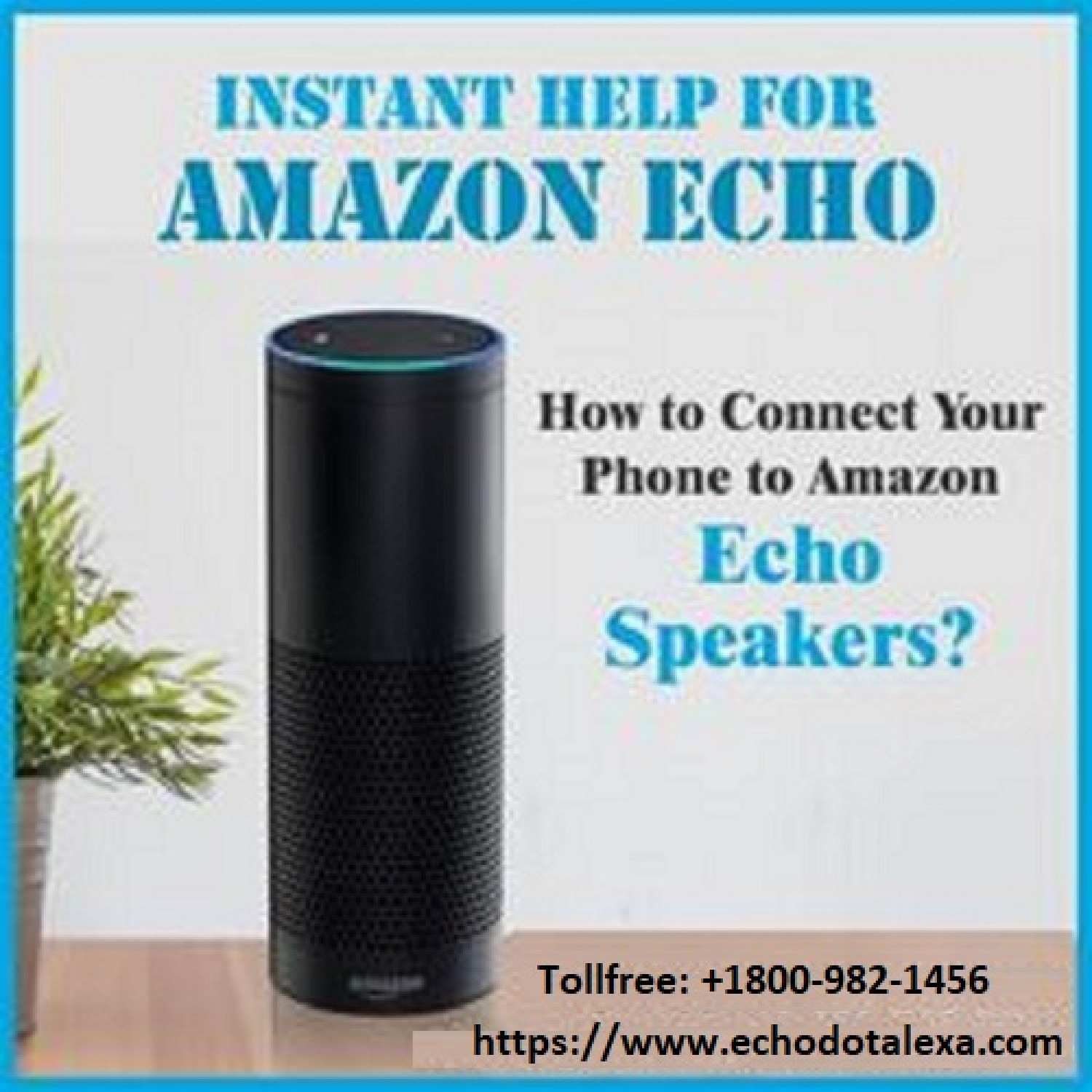 Alexa Echo App Setup for Windows Download and Install Infographic