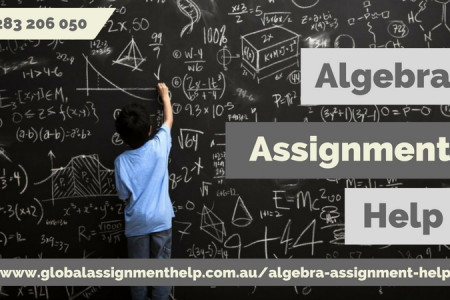 algebra infographics ly algebra assignment writing assistance infographic