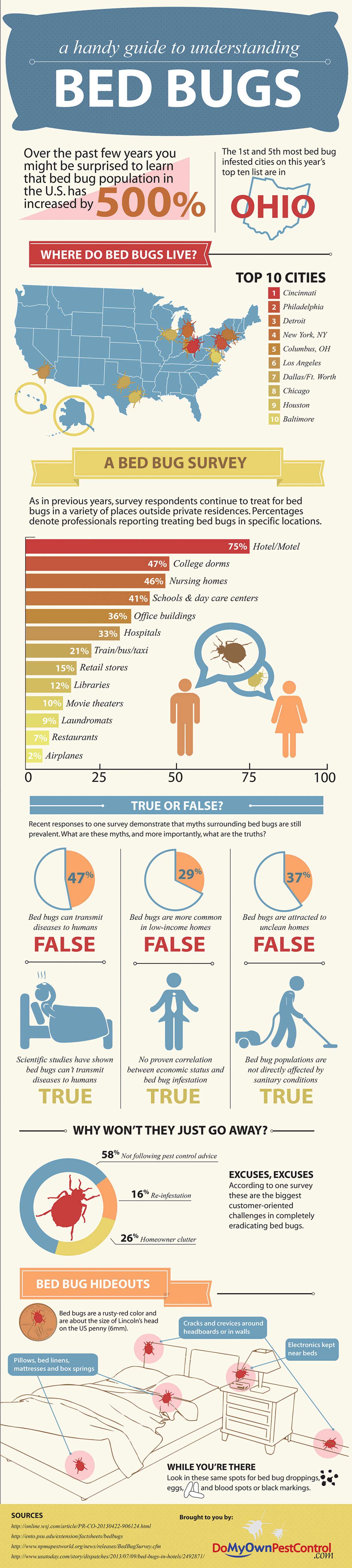 All About Bed Bugs Infographic