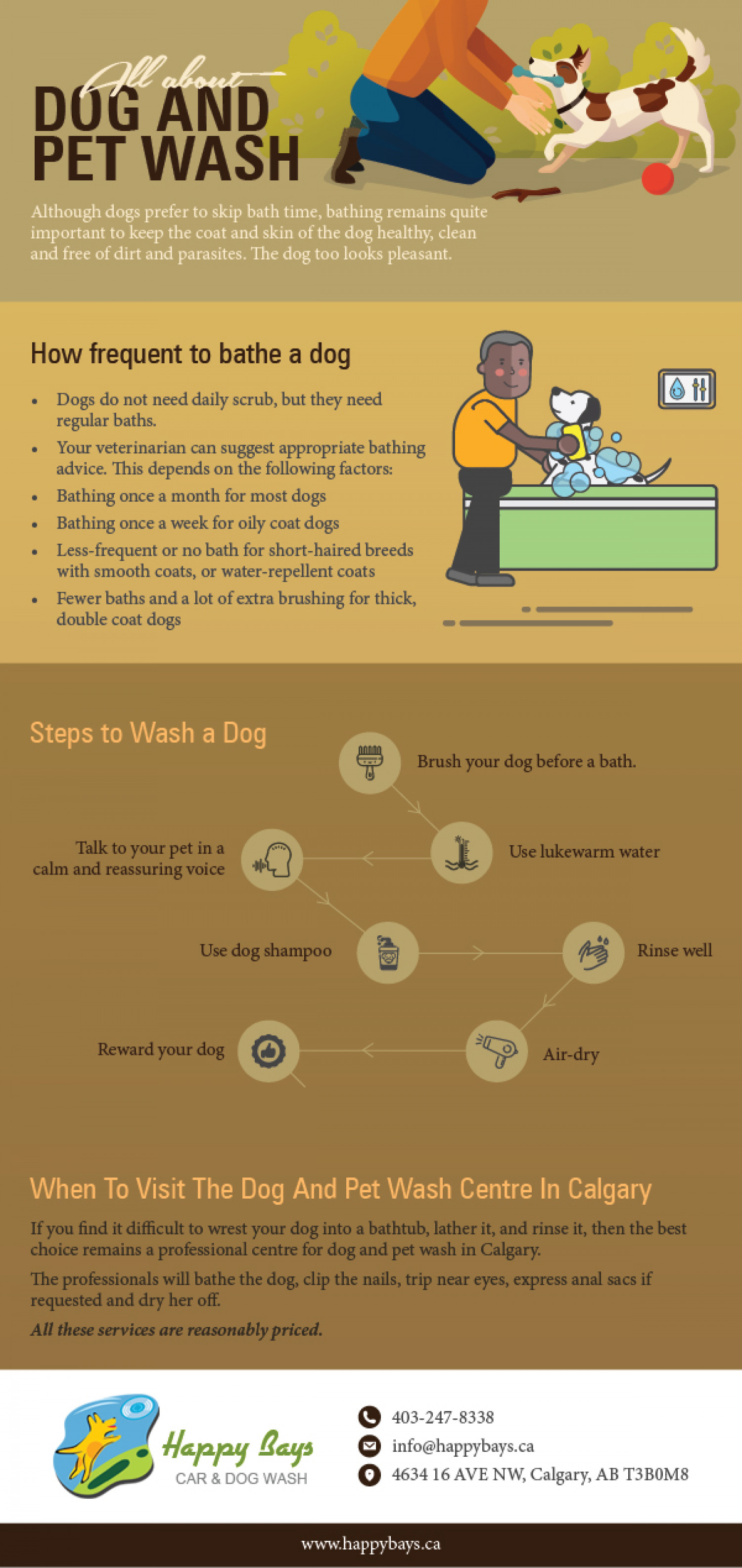 All About Dog And Pet Wash Infographic