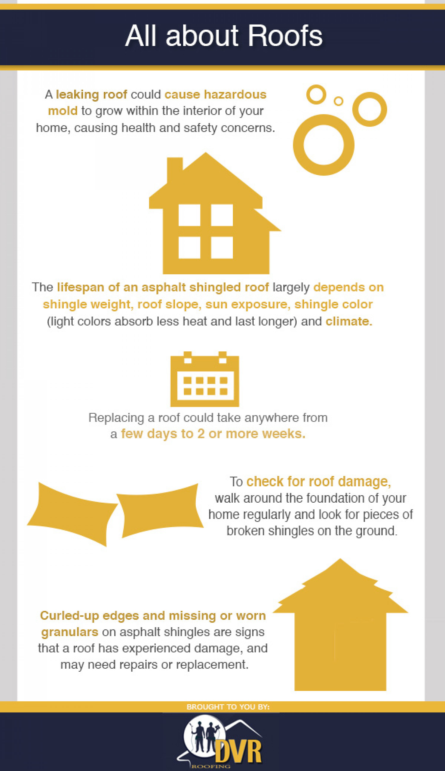 All about Roofs Infographic