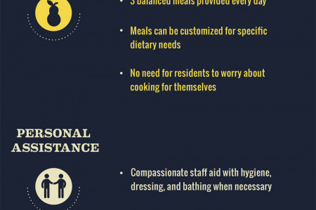 All American Assisted Living Provides Support and Care Infographic