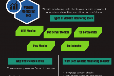 All That You Should Know About Website Uptime Monitoring Infographic