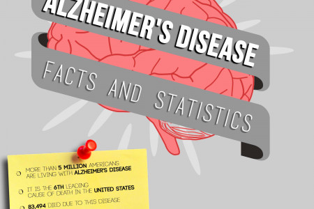Alzheimer's Disease in the USA Infographic
