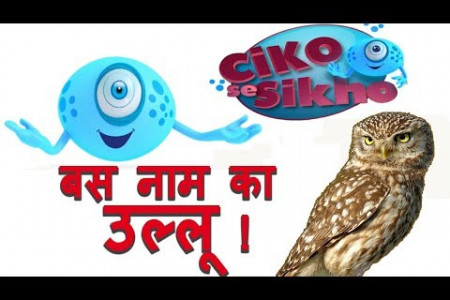 Amazing Facts about Owls | Why Owl is so Wise | Kids GK | Ciko se Sikho  Infographic