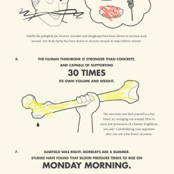 Amazing Facts About The Human Body | Visual.ly