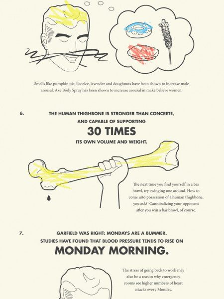 Amazing Facts About The Human Body Infographic