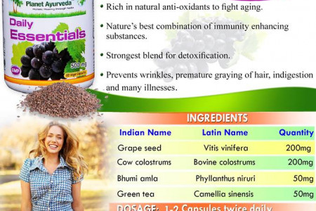 Amazing Health Benefits of Daily Essentials - Boosts Immunity Infographic