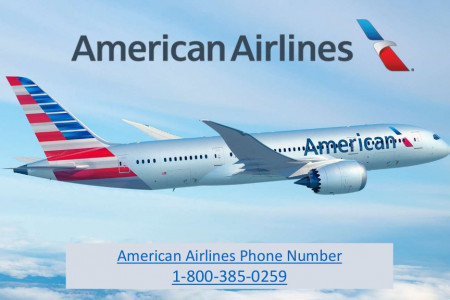 American Airlines Phone Number - 1-800-385-0259 Infographic