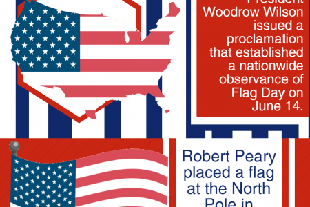 American Flag Facts & Statistics Infographic