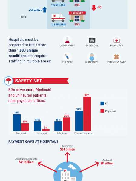 America's Hospitals: Prepared to Care Infographic