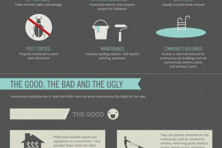 America's Love/Hate Relationship With Their Homeowners Association  Infographic