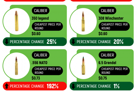 Ammo Prices by Caliber [updated 2020] Infographic