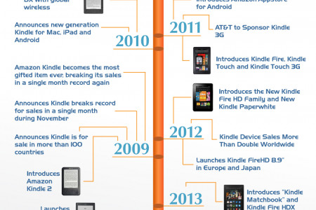 An Amazon Story Infographic