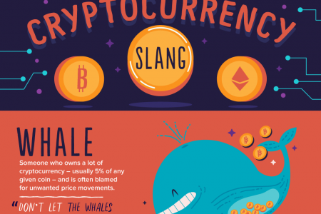 :::An illustrated guide to cryptocurrency slang::: Infographic