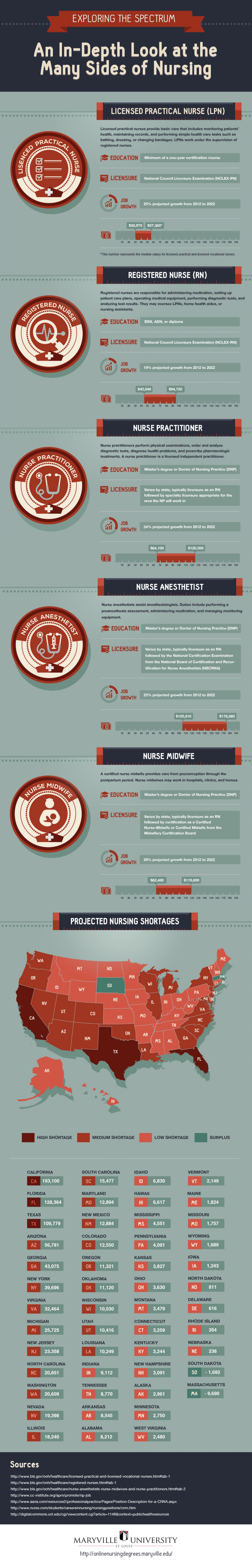 An In Depth Look at the Many Sides of Nursing Infographic