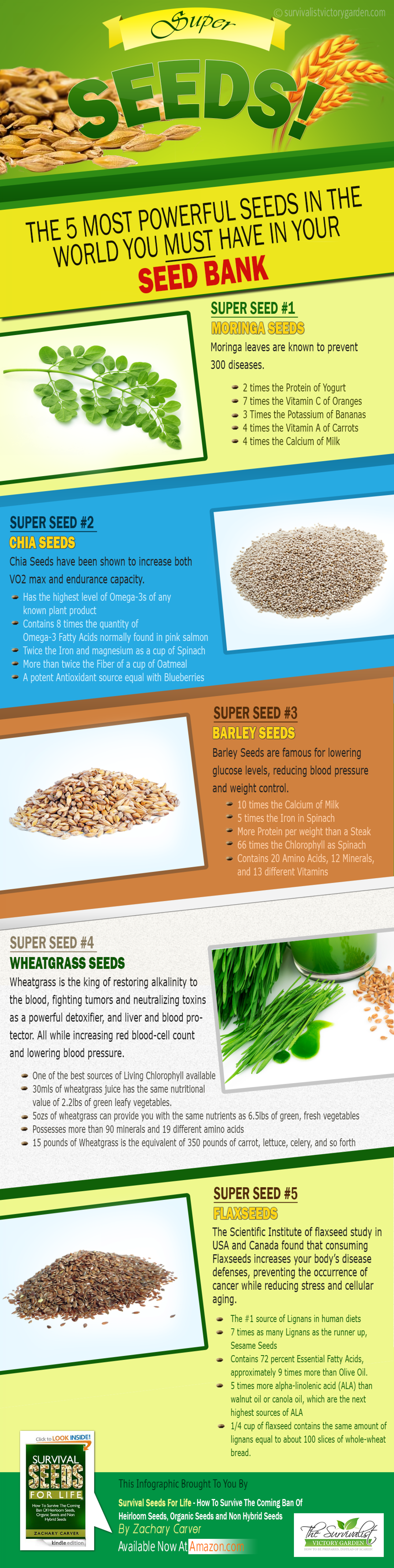 An Infographics on World's Powerful Seeds Infographic