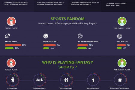 An Insight on Non Fantasy Sports Users Infographic