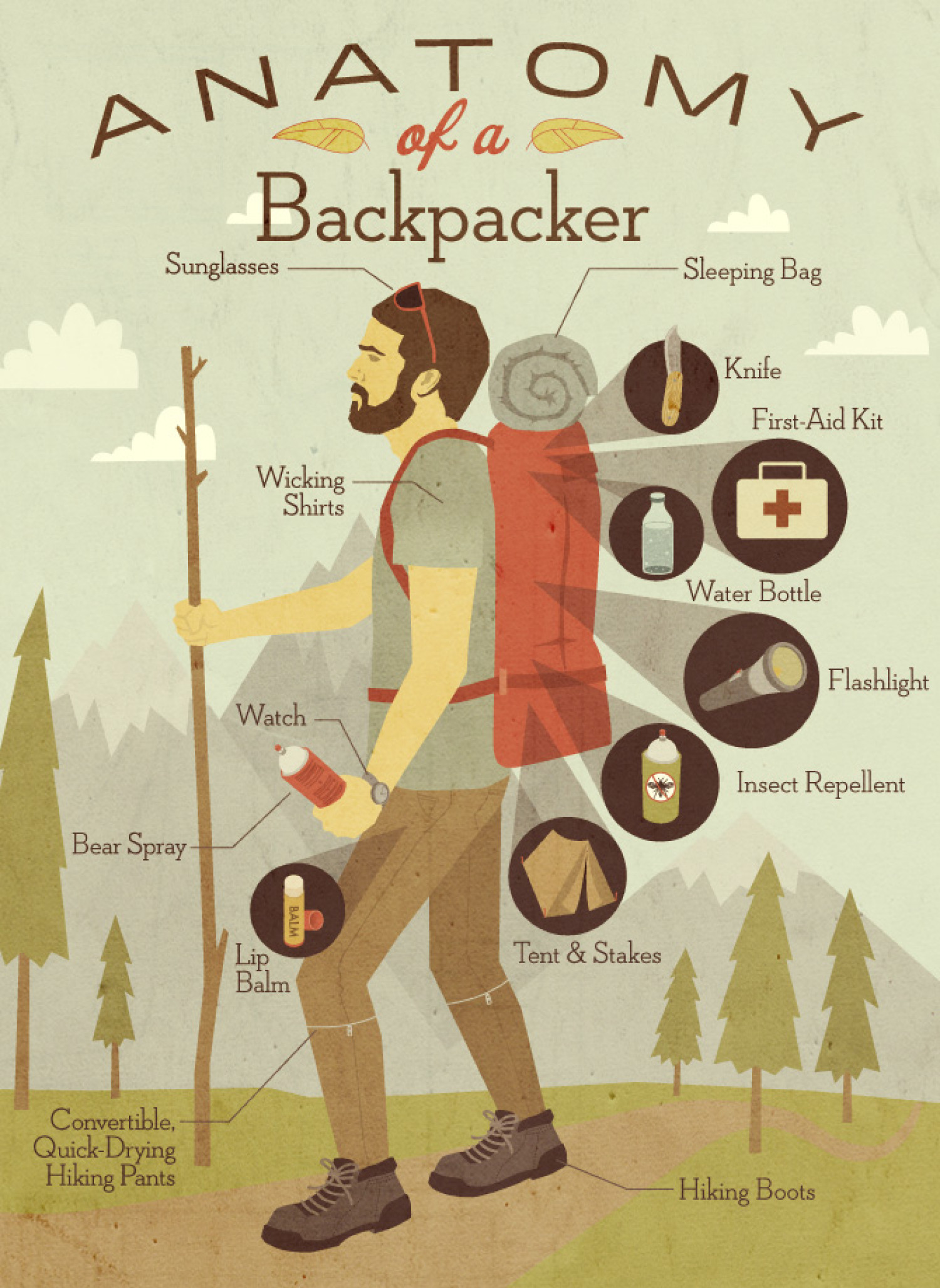 anatomy backpacker infographics