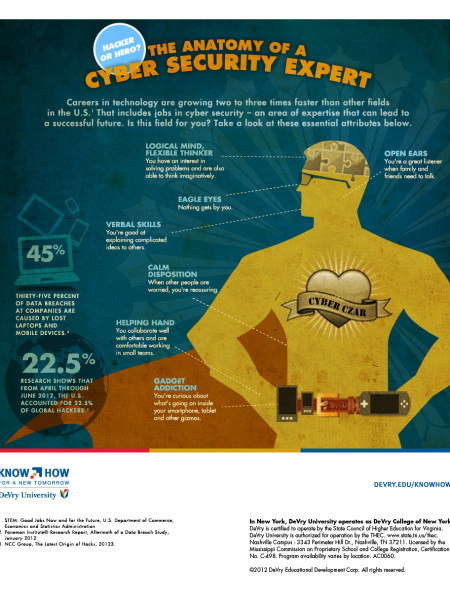 Anatomy of a Cyber Security Expert Infographic