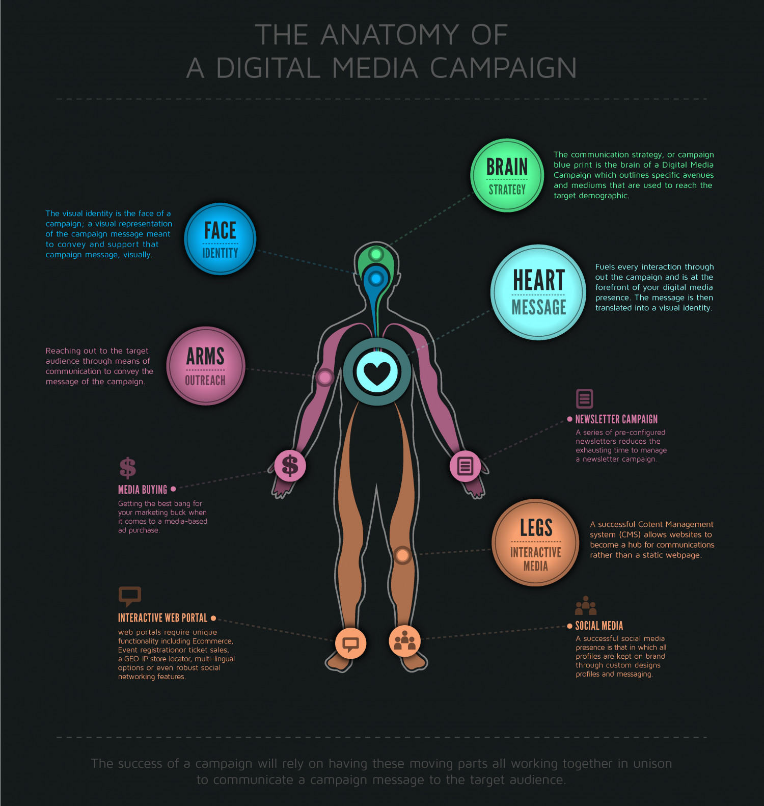 Anatomy of a Digital Media Campaign Infographic