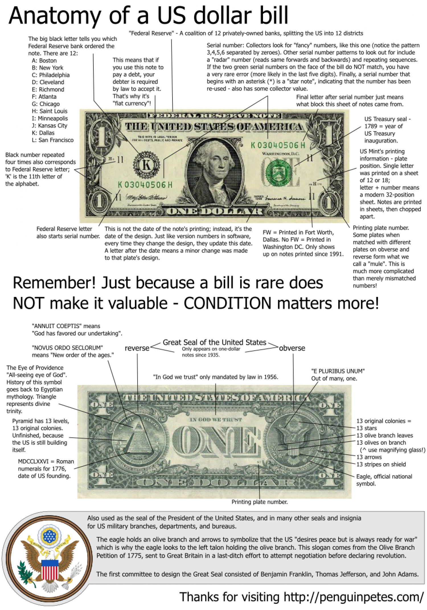 Anatomy of a us dollar bill visual anatomy of a us dollar bill infographic biocorpaavc Images