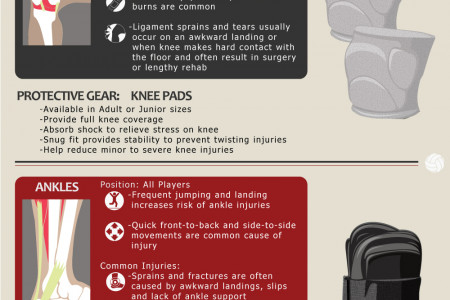 Anatomy of a Volleyball Player Infographic