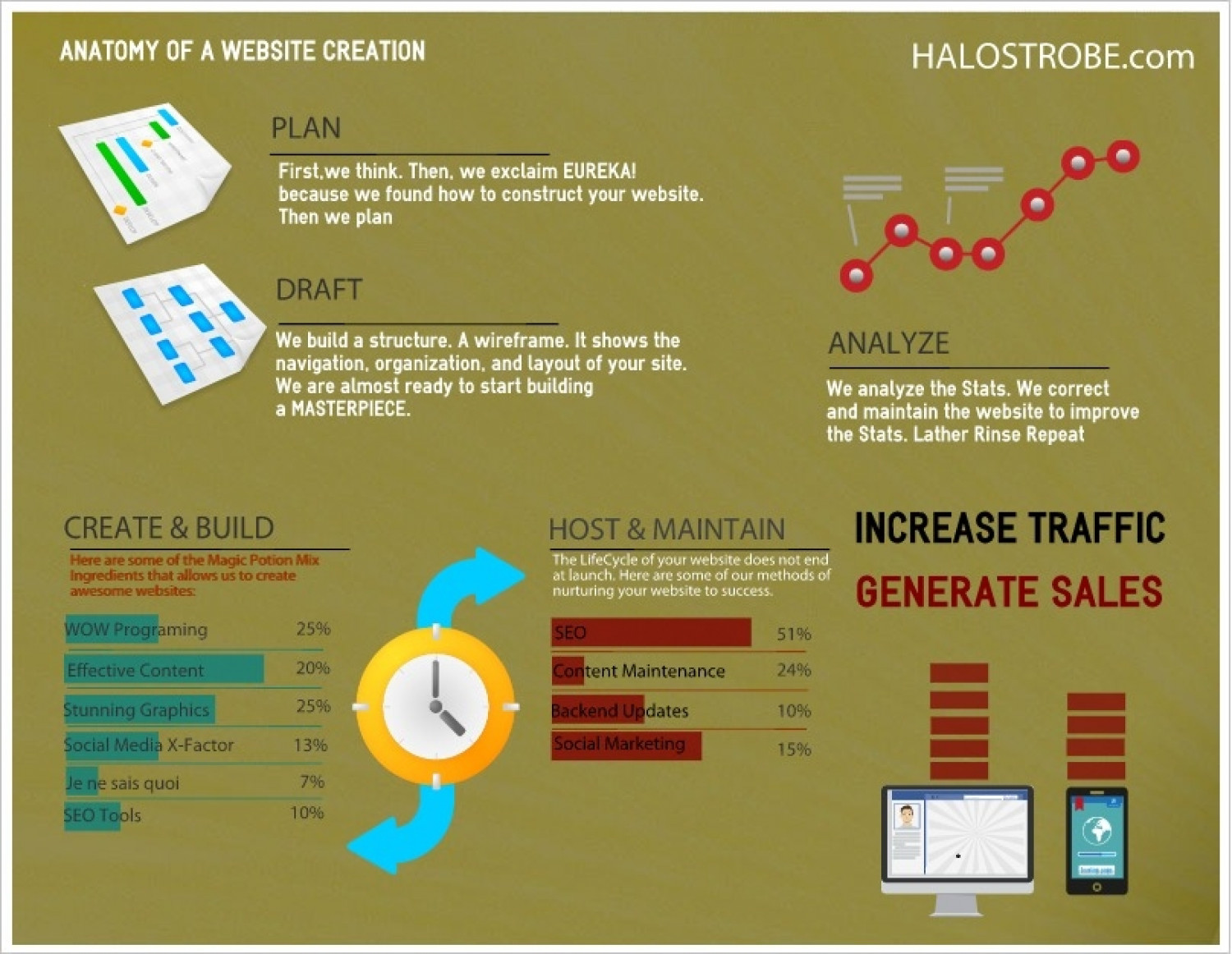 anatomy of a website creation Infographic