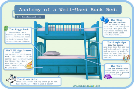 Anatomy of a Well-Used Bunk Bed Infographic