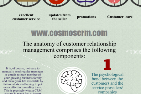 Anatomy Of Customer Relationship Management Infographic