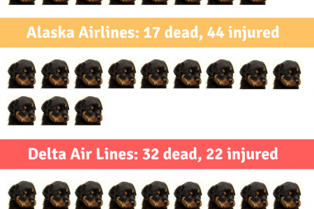Animal death & injury rates among US airlines Infographic