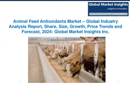 Animal Feed Antioxidants Market – Global Industry Analysis Report 2024 Infographic