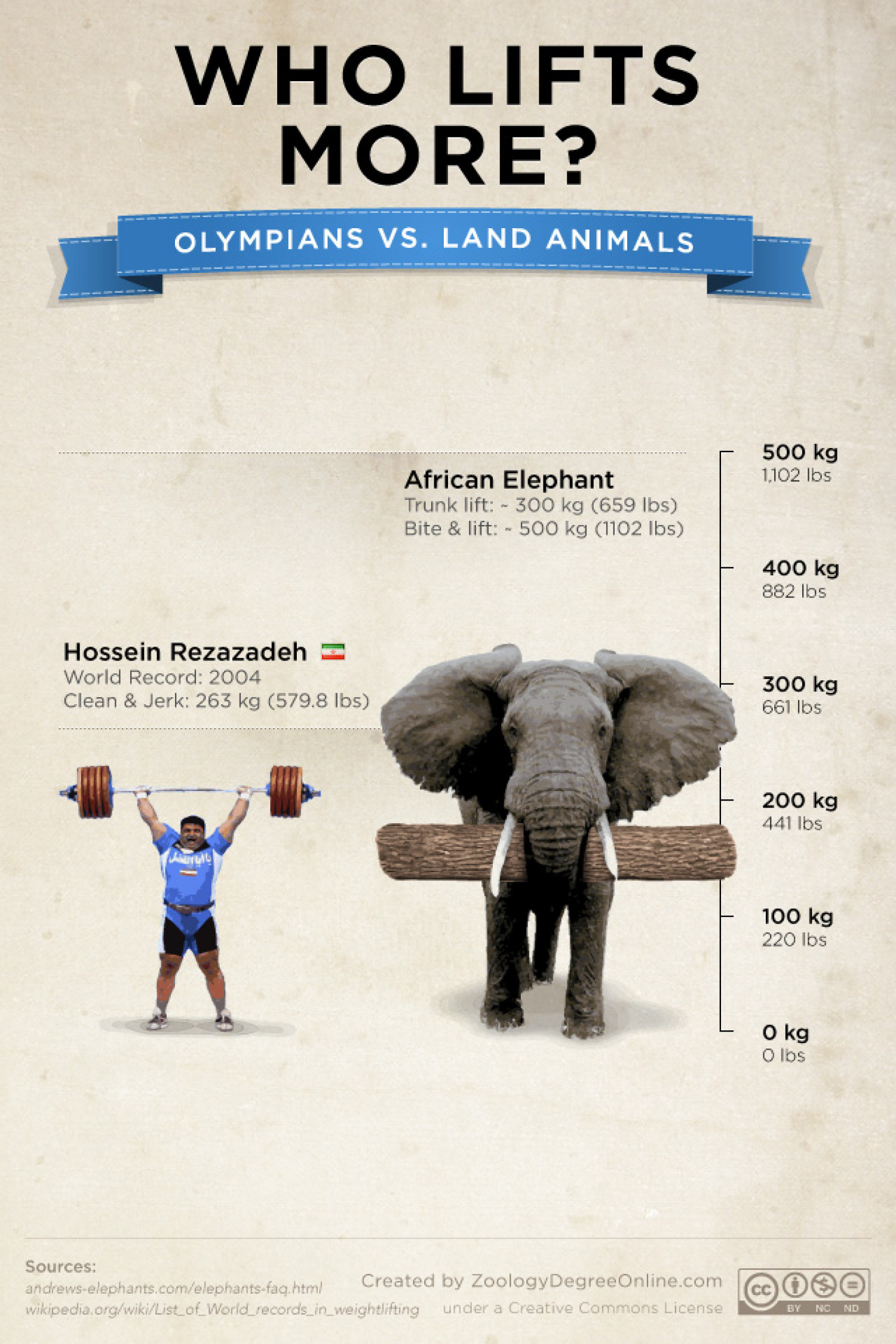 Animals Vs Olympians - Who Lifts More? Infographic