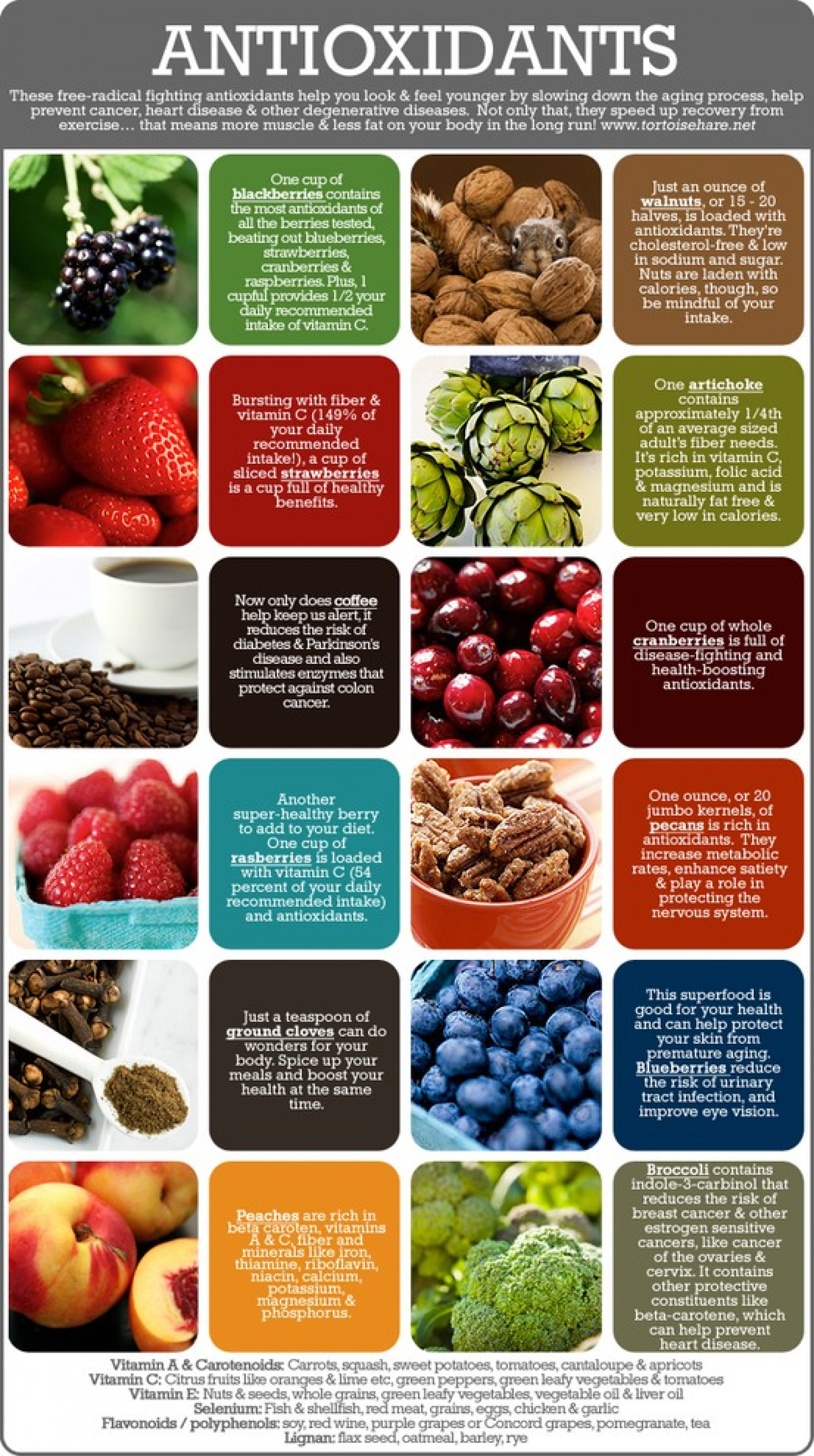 Antioxidants Infographic