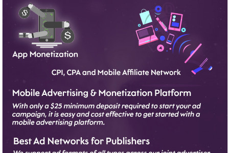 App Monetization Infographic