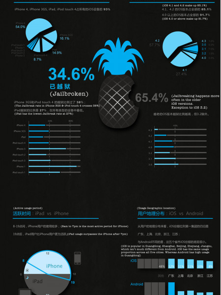 Apple iOS in China Infographic