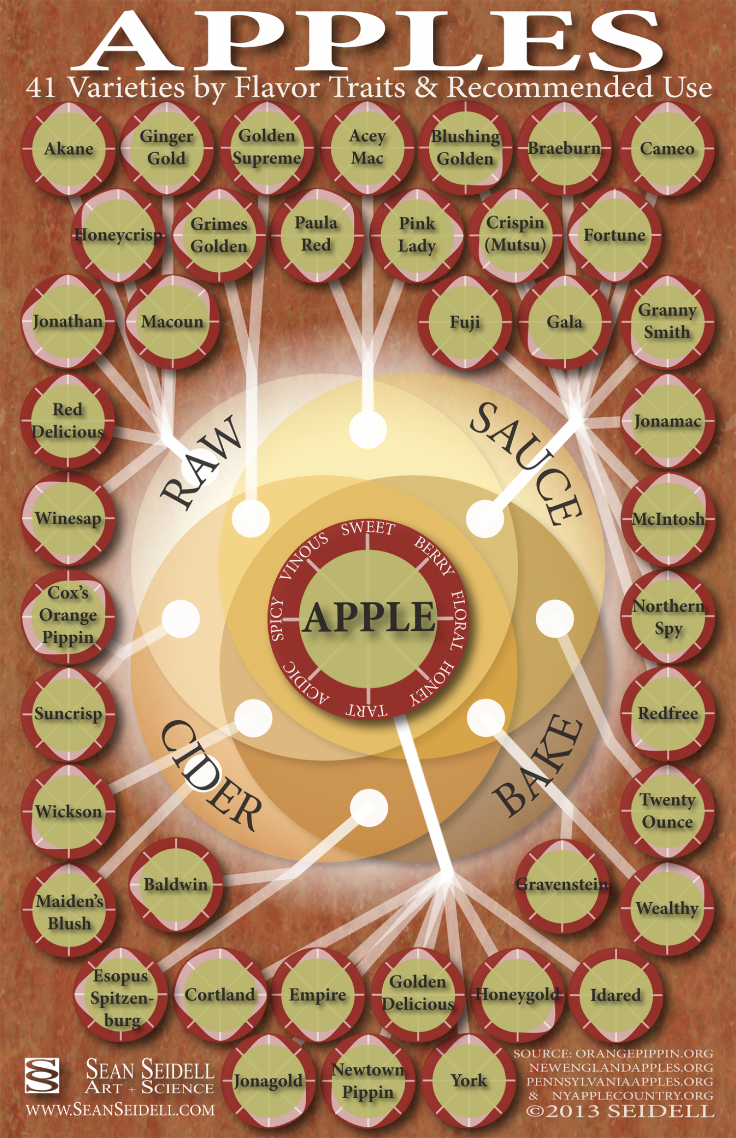 Apples: 41 Varieties by Flavor Traits and Recommended Use Infographic