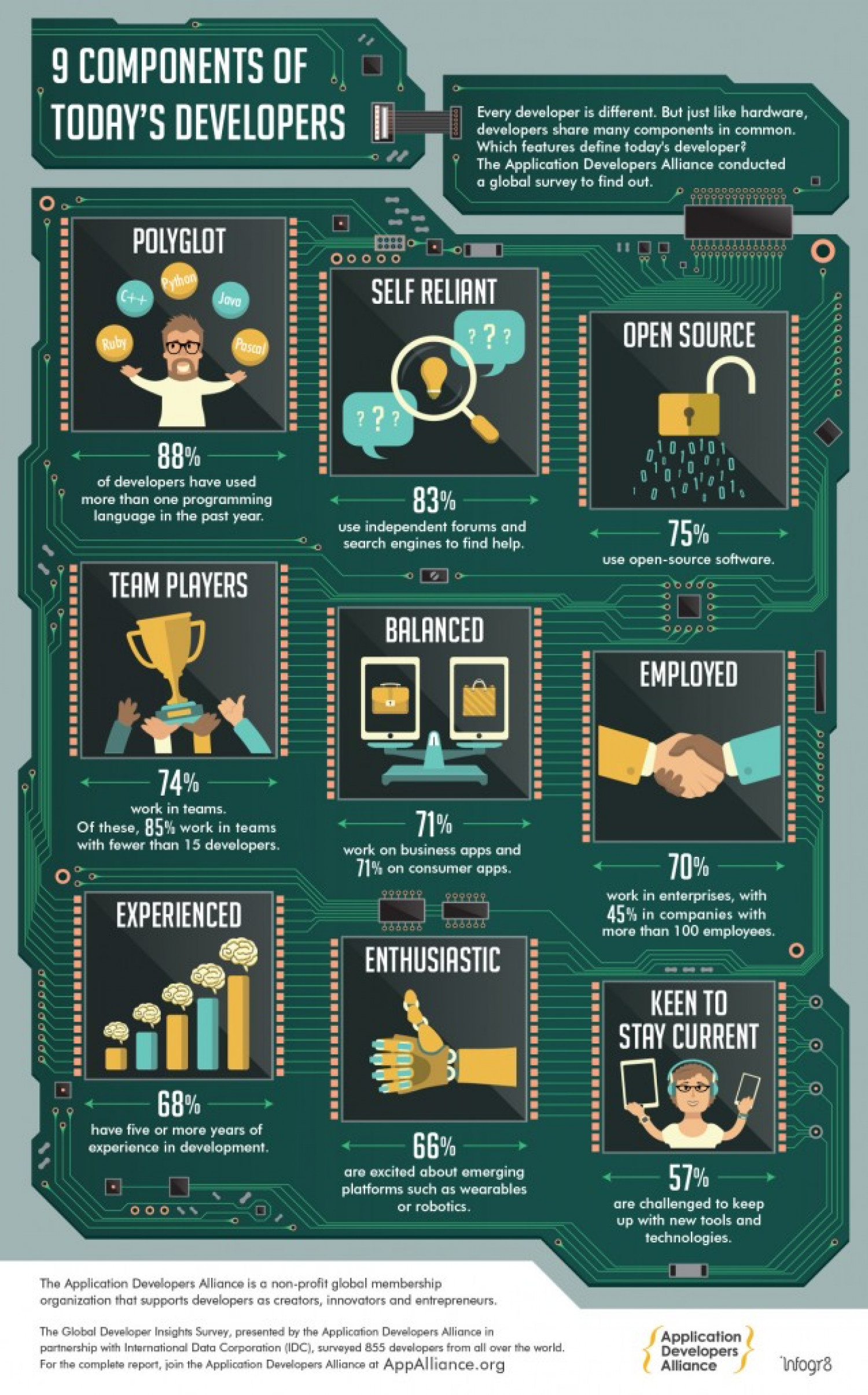 Application Developers Alliance: 9 Components of Today's Developers Infographic