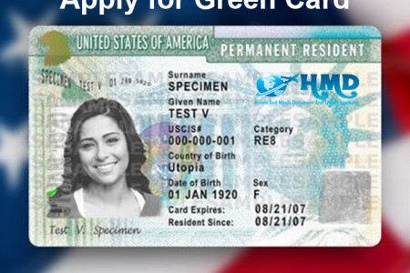 Apply for Green Card Infographic