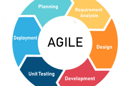 Approach for Agile methodology Application Development Infographic