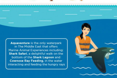 Aquaventure, Atlantis The Palm Infographic