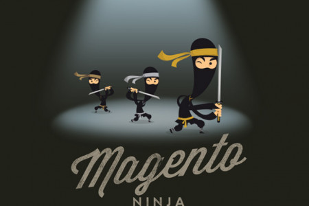 Are you a Magento Ninja? Infographic