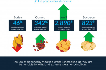 Are You Effectively Managing Your Crop Risk in Canada? Infographic