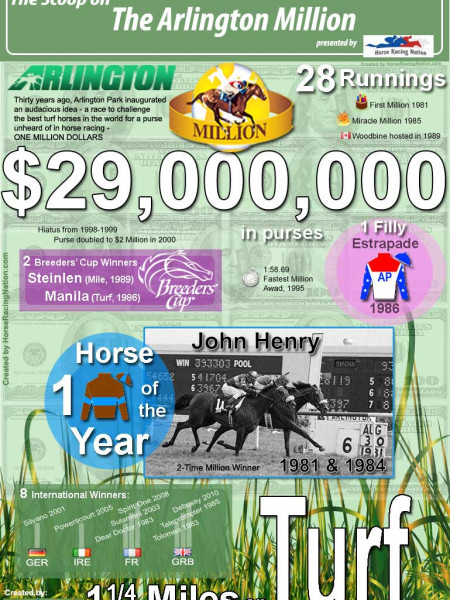 Arlington Million Fun Facts Infographic