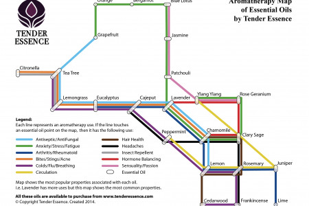 Aromatherapy Map of Essential Oils Infographic