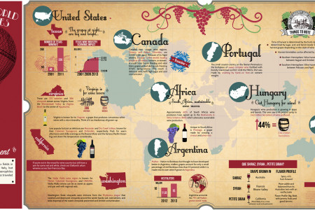 Around The World In 80 Glasses - Wine Tastings From Every Continent Infographic