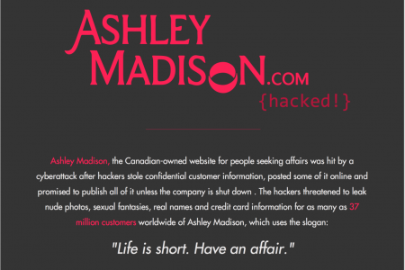 Ashley Madison Hack In Brief  Infographic